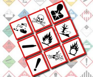 10 Types of WHMIS Labels and Their Symbol Meanings
